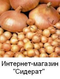 Семена овощей, зелени и пряных трав