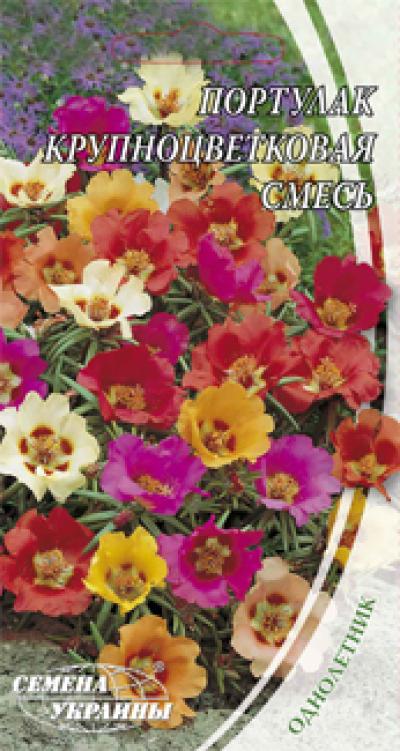 Цветы однолетние купить натуральные камни самоцветы купить в перми екатеринбурге