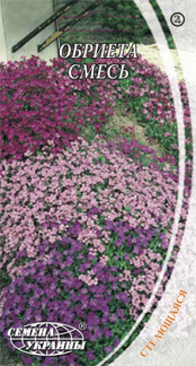 каталог многолетние цветы фото: